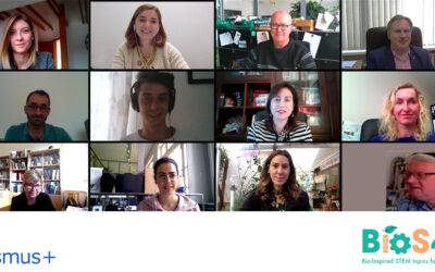 BIOS4YOU: the 2nd Online Transnational Meeting of the project