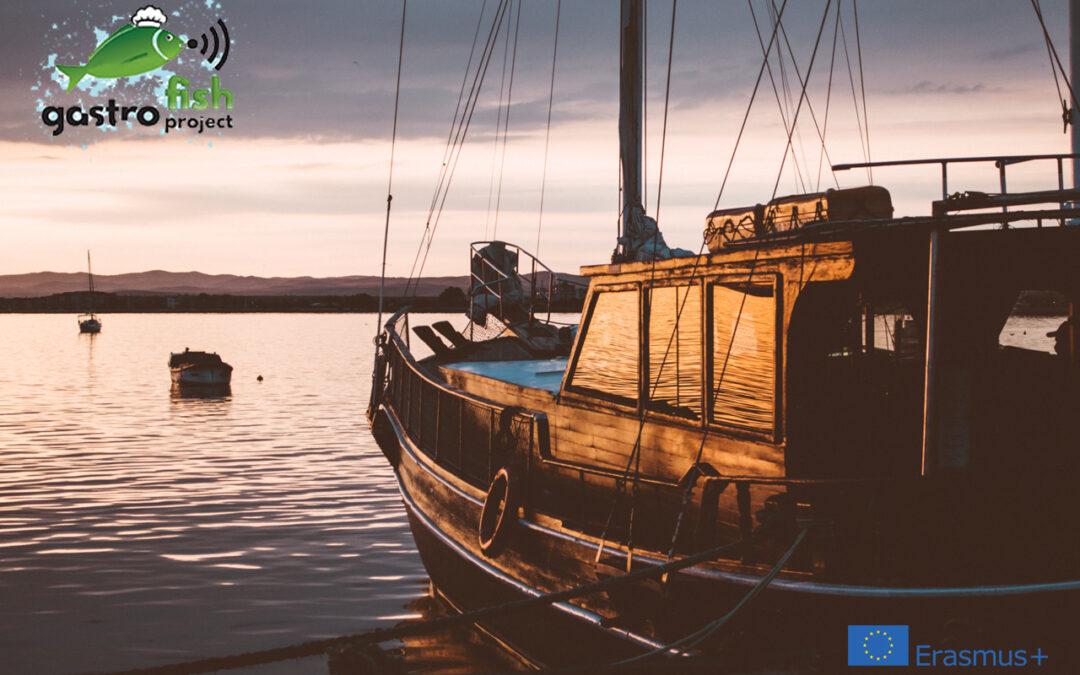 Siamo felici di raccogliere le vostre opinioni, abitudini, preferenze culinarie e gastronomiche del settore ittico.